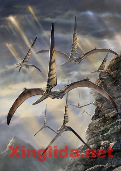 飞行的三叉星——中国学者解密风帆翼龙 - 邢立达 - 邢立达的恐龙频道